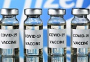 COVD-19: Four vaccines on Cameroon's immunization plan